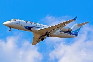 Следственные органы проводят проверку по факту аварийной посадки самолета в