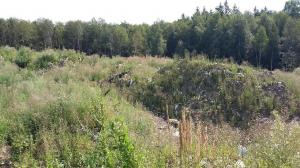 Минэкологии проверило складирование отходов на приаэродромной территории