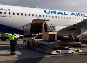 Львица Лола прилетела в Крым (Международный аэропорт