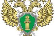 В Омске в отношении летавшего без документов пилота возбуждено административное производство