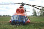 В воздухозаборнике упавшего под Омском вертолета обнаружили птицу