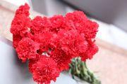 Сотрудники МЦ АУВД возложили цветы на митинге, посвященном Дню Героев Отечества