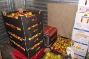 С начала июня в Красноярском аэропорту было обнаружено 125 кг запрещенных овощей и фруктов