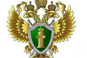 Новосибирец привлечен к административной ответственности за незаконный запуск дрона в Центральном районе города