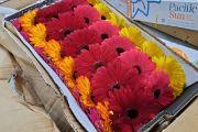 В Екатеринбург доставили 300 тонн цветов к 8 Марта