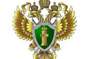 В результате принятых Красноярской транспортной прокуратурой мер реагирования в аэропорту Туруханск установлена приаэродромная территория
