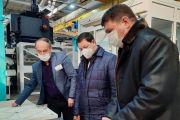 Вячеслав Михеев рассказал Главе Мордовии о развитии КЭМЗ